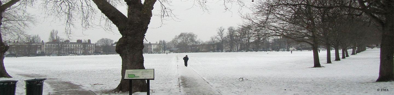 feltons snow